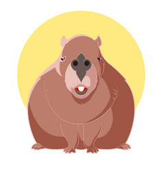 cartoon smiling capybara vector image vector image