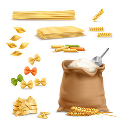 realistic pasta wheat spikelets flour vector image