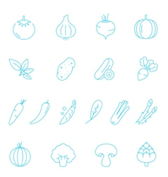 Thin lines icon set - vegetable vector image