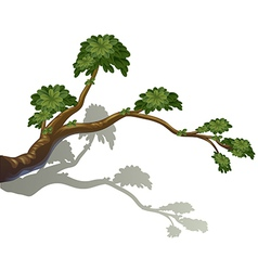 A branch of a tree vector image
