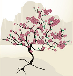 cherryblossom vector image vector image