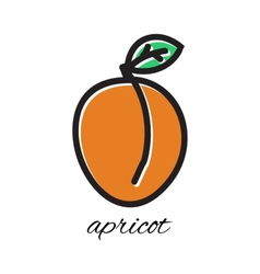 Doodle apricot hand-drawn object isolated on white vector