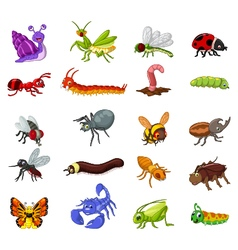 Collection of insects cartoon for you design vector