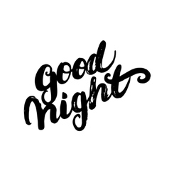 Good night hand written calligraphy lettering vector image vector image