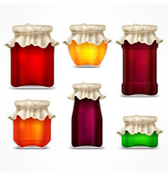 set of jars with jam and retro vector image vector image