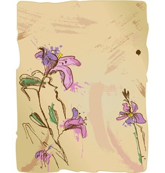 Aquarelle sketch of iris flowers vector image