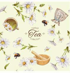 Chamomile tea seamless pattern vector