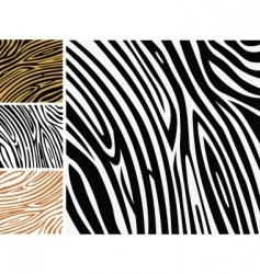 zebra print vector image