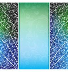 creative banner vector image vector image