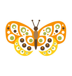 cute colorful butterfly with open wings vector image
