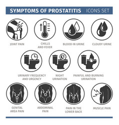 Symptoms of prostatitis infographic vector