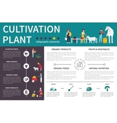 Plant cultivation infographic flat vector