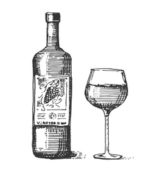 Bottles and glass of wine engraved vector