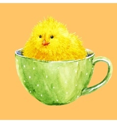 Cute yellow chick in a cup vector image