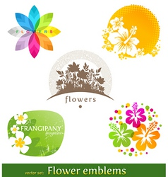 flower emblems and labels vector image vector image