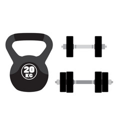 Sports equipment for fitness crossfit gym barbells vector