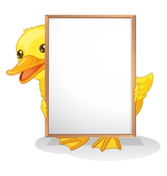 A duck hiding at the back of an empty whiteboard vector