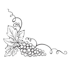 Floral decoration - corner vector