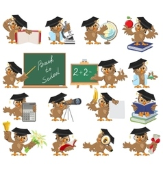 Big set of teacher owl vector image