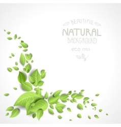 Decorative corner with green leaves vector