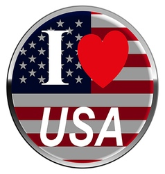 Flag USA American Culture Star Form Striped Countr vector image