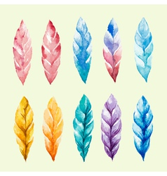 Set of colored watercolor feathers vector