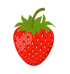 strawberry icon isolated on white background vector image vector image