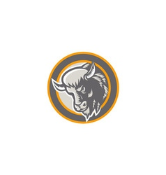 American Buffalo Bison Head Circle Retro vector image