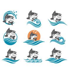 Bass fish set vector