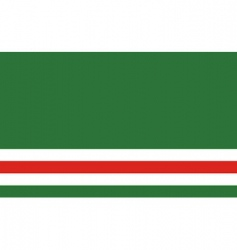 chechen republic of ichkeria flag vector image vector image