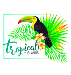 tropical island composition with toucan leaves vector image vector image