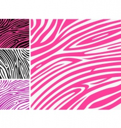 Zebra print background vector