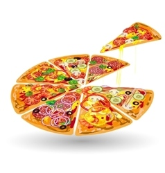 Pizza color composition vector
