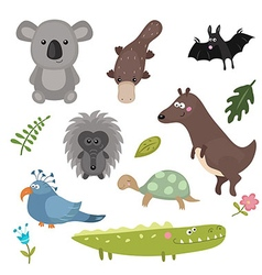 different animals of australia vector image vector image