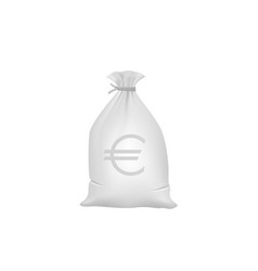 grey money bag with euro sign vector image vector image