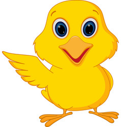 Happy chick cartoon vector