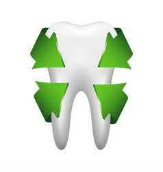 White tooth with four green arrows stomatology vector