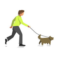 boy walking dog colorful full length vector image vector image