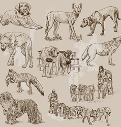 Dogs - an hand drawn pack vector