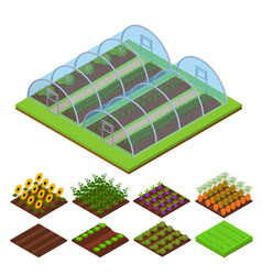 greenhouse isometric view vector image vector image