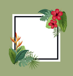 Poster hibiscus and bird of paradise tropical vector