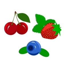 Set of juicy ripe berries isolated on a white vector