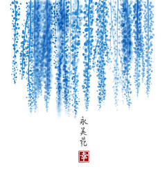 blue wisteria hand drawn with ink on white vector image