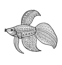 ColoringFish vector image vector image