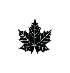 Leaf - vector