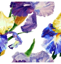 Seamless pattern with color irises1-04 vector