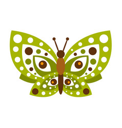 Green butterfly with open wings vector