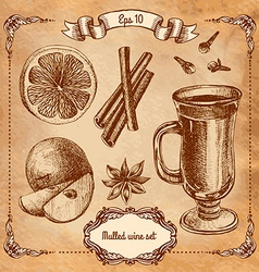 Set of mulled wine fruit and spices hand drawn vector