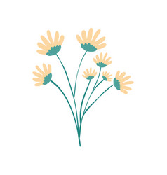 Hand drawing yellow color daisy flower bouquet vector