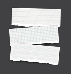 torn school paper banners vector image